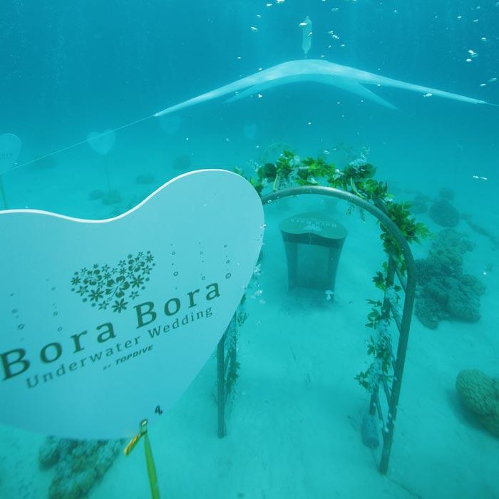 Bora bora underwater wedding adventure wedding bora bora underwater wedding junglespirit Choice Image